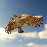 Japanese Edo Kites /  Tonbi